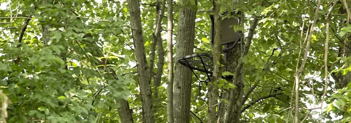 Treestand-Safety-Feature